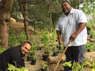 People planting trees and smiling